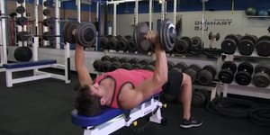 How to Improve the Bench Press for High Schoo…