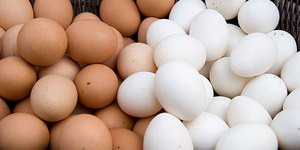 Are Eggs Good for Your Health?