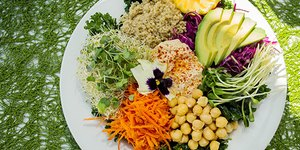 Go Green With These 3 Easy Plant-Based Recipe…