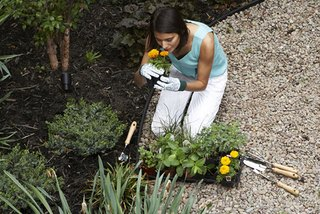 5 Tips for Stress-Free Gardening
