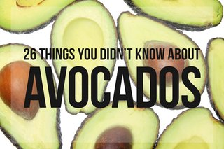 26 Things You Didn't Know About Avocados