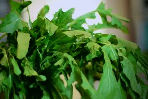 The Best Green, Leafy Vegetables to Increase Iron