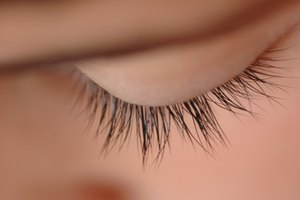 Eyelash Growth Cycle