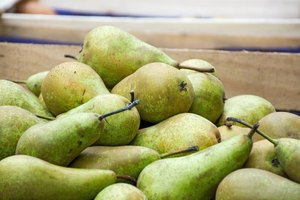 Carb Count for Pears