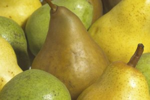 How Do I Prepare Pears for Freezing?