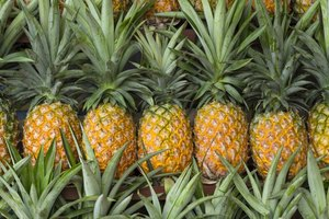 The Link Between Fresh Pineapple & Testosterone