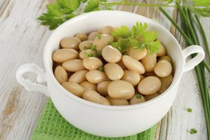 How Does White Kidney Bean Extract Work?