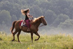 Exercises to Improve & Strengthen Horseback Riding Post…