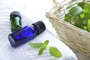 Peppermint Oil & Pregnancy