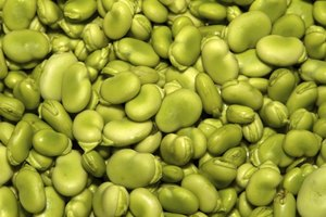 Types of Beans That Cause Excess Gas