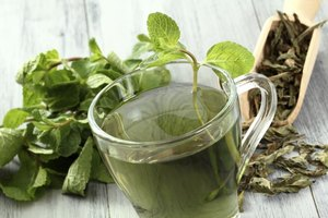 The Benefits of White Tea Versus Green Tea