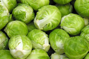 Brussels Sprouts and Digestion