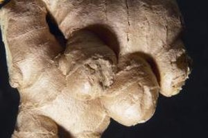 Ginger Root for Bronchitis