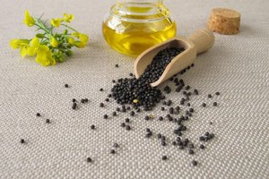 Can I Substitute Canola Oil for Safflower Oil?