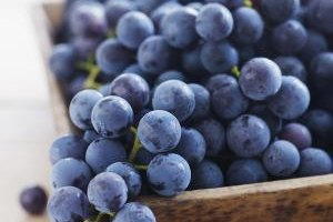 The Difference Between White Grape Juice and Purple Gra…