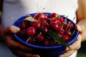 How Many Calories Do Bing Cherries Have?