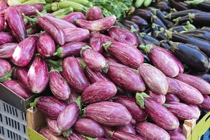 Grilled Eggplant Nutrition