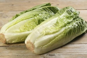 Nutritional Value of Mesclun Greens vs. Romaine Lettuce