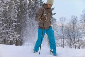 The Best Nordic Walking Poles
