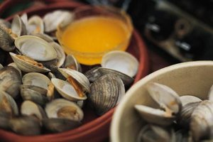 How to Prepare & Cook Large Clams