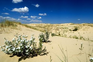 State Parks in Midland & Odessa, Texas