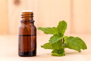 How Do I Substitute Peppermint Oil for Peppermint Extra…