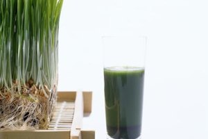 Eating Wheatgrass Vs. Wheatgrass Juice