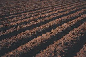 Ways to Prevent Soil Pollution