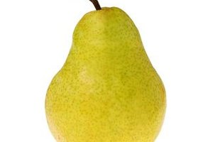 Pear-Shaped Body Weight Loss