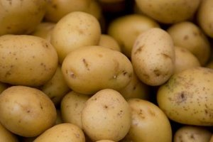 Potato Allergy Symptoms