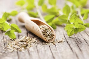 Oregano Tea Benefits