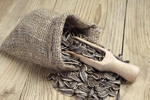 What Are the Dangers of Eating Too Many Sunflower Seeds…