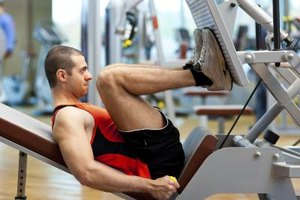 What Muscles Does the Seated Leg Press Exercise Machine…