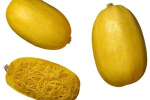 How to Buy Spaghetti Squash