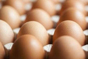 How Much Protein Is in the Egg Yolk vs. the Egg White?