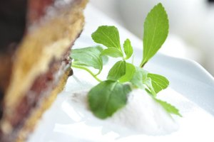 How Much Stevia Can You Have a Day?