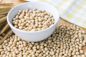 9 Essential Amino Acids in Soybeans