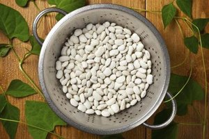 Nutrition of White Northern Beans