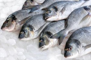 How Long Can You Keep Fresh Fish in the Fridge Before Y…