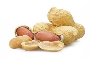 Can a Peanut Allergy Cause a Chronic Cough?