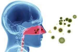 Herbal Remedies for Nasal Polyps