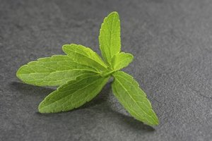 Is Stevia Good for You?