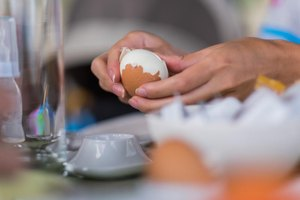 The 14-Day Egg Diet