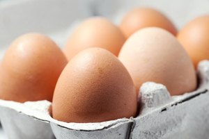 What Proteins Are Found in Eggs?