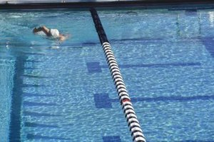 Is 30 Minutes of Swimming Better Than Running on the Tr…