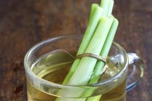Can You Drink Too Much Lemongrass Tea?
