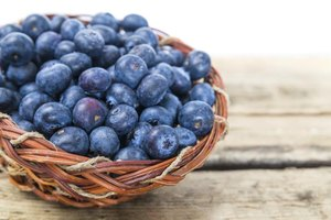Foods That Will Heal the Pancreas
