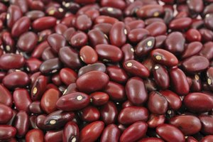 Are Beans Good for Weight Loss?