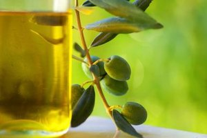 What Are the Benefits of Olive Oil for Digestion?