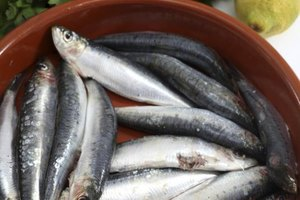 Side effects of fish oil relative to gout livestrong com for Fish and gout